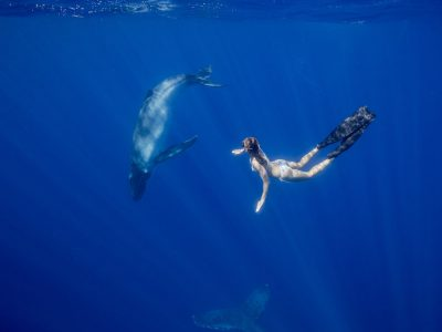 girlswimswithwhale-freediving-tonga-whaleswim-scottwilsonimagery